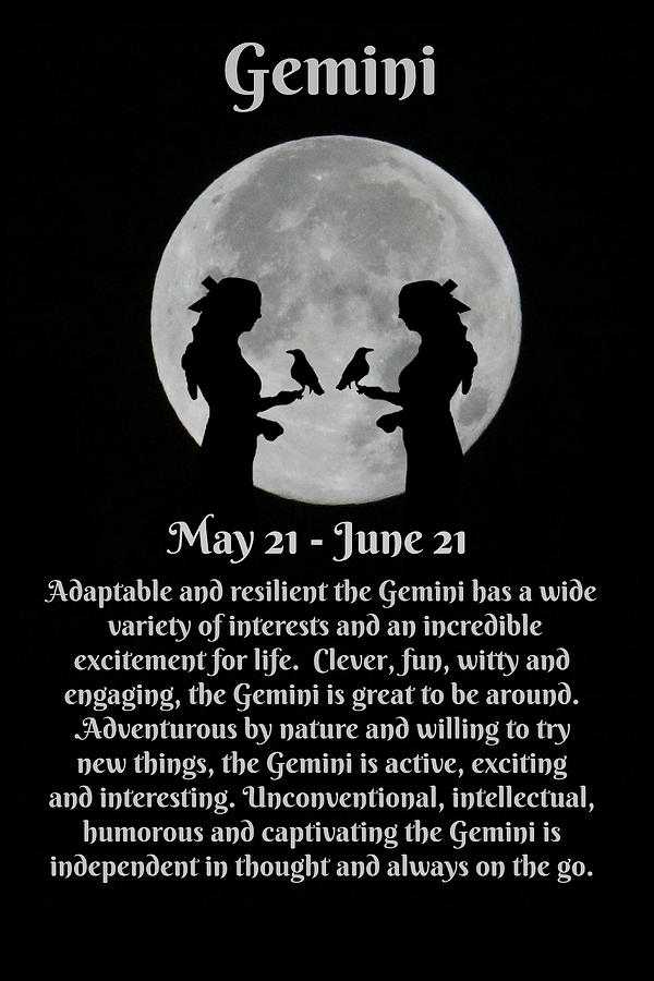 Gemini Zodiac Sign Of The Twins May And June Birthdays by Stephanie Laird
