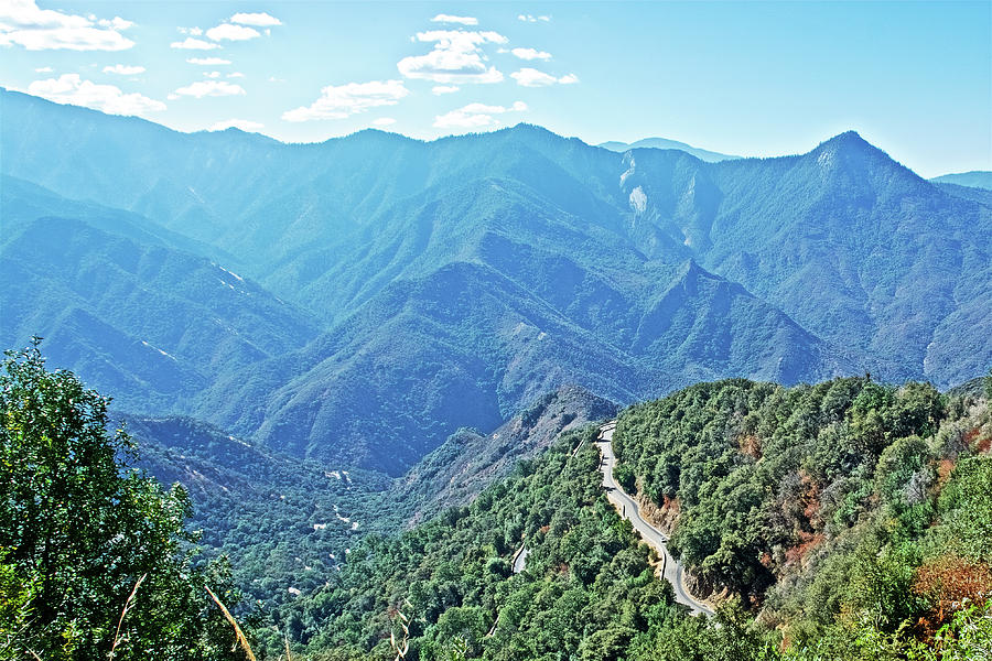 Generals Highway In Sequoia National Park, California