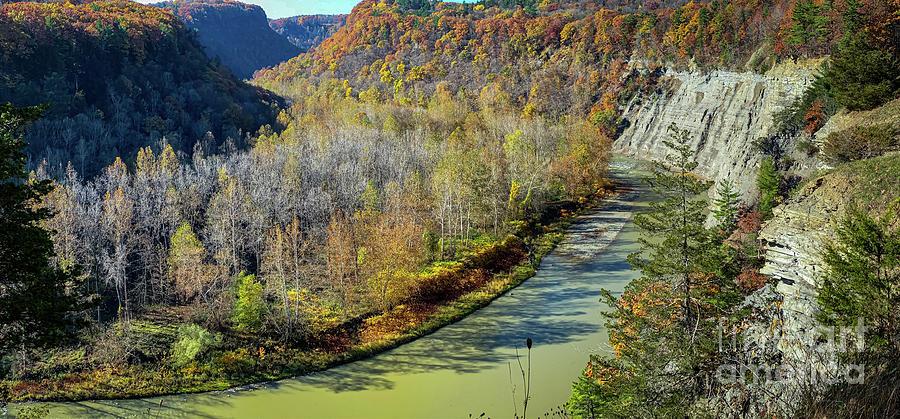 Genesee Valley Gorge by William Norton