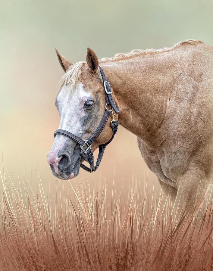 Gentle Spirit  by Kelley Parker