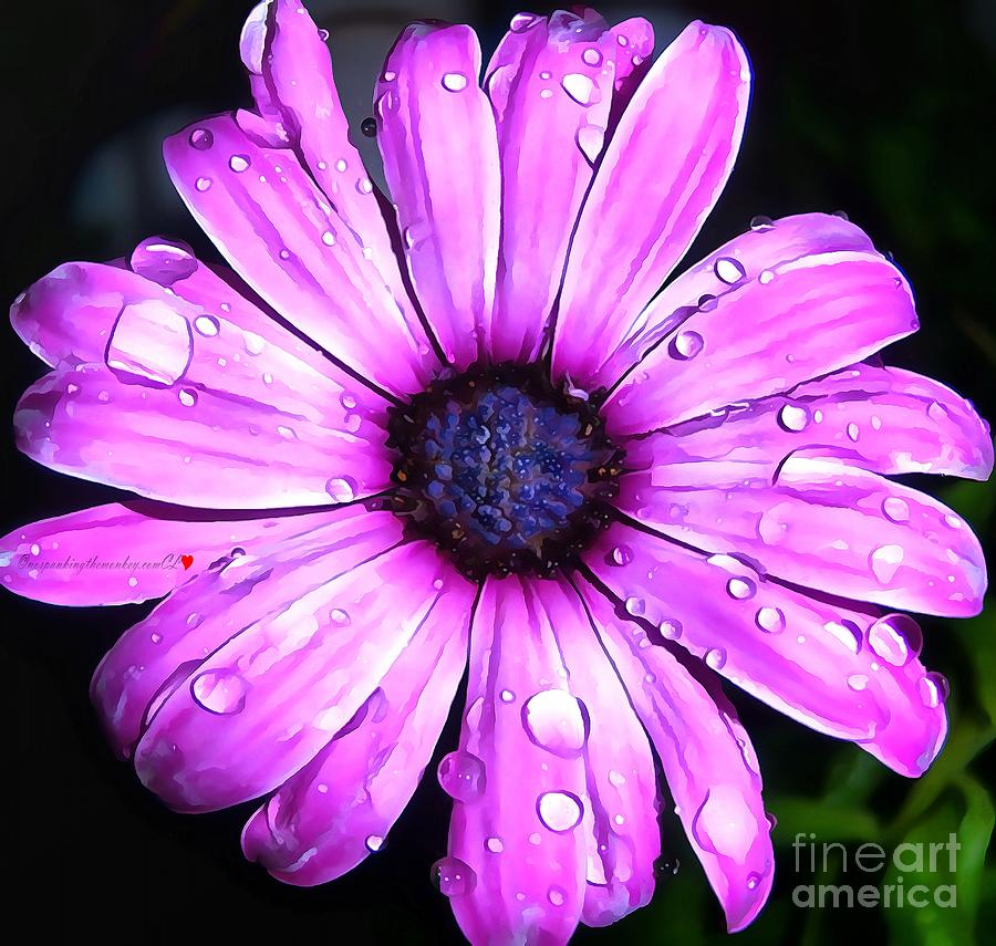 Gerber Daisy In Acrylic by Catherine Lott