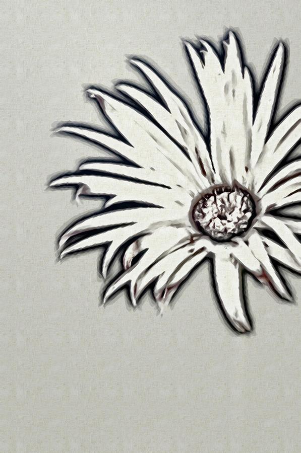 Gerbera Flower Shape Photograph by Maria Mosolova