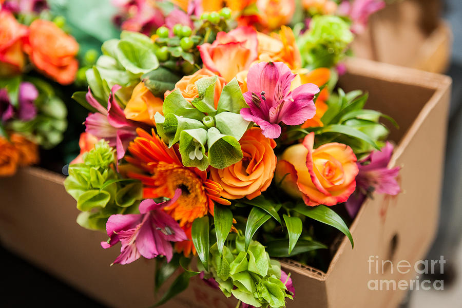 Symbol Photograph - Gerbera, Tulips And Mix Of Summer by Fotozotti