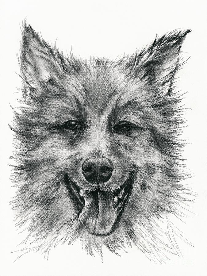 German Shepherd Smile by MM Anderson