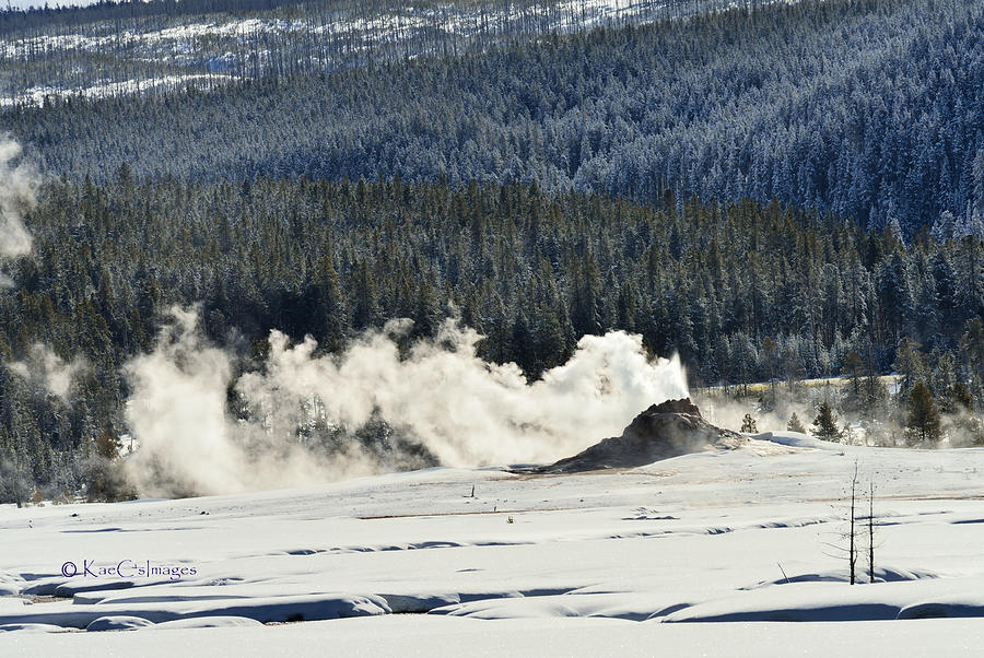 Geyser With Steam and Snow by Kae Cheatham