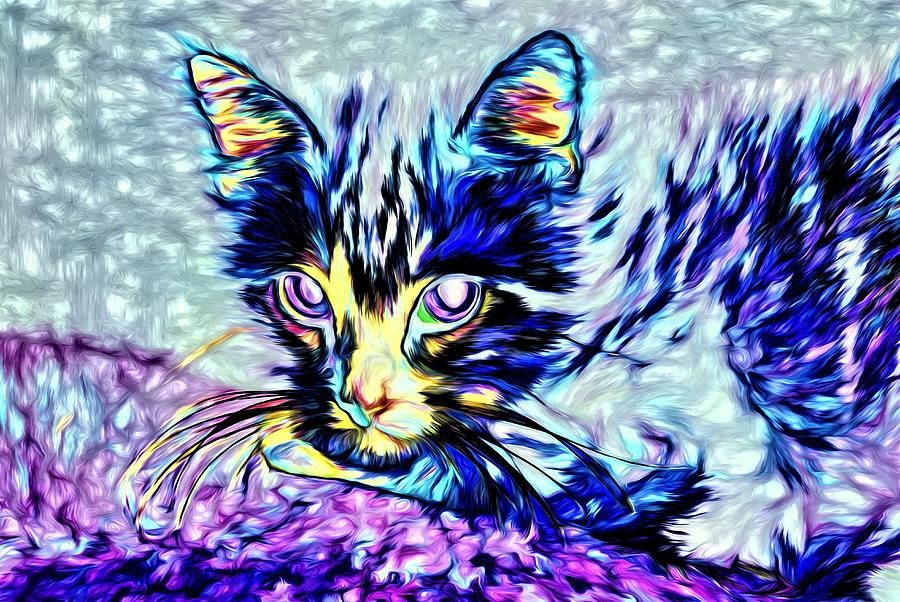 Ghost Cat Version 3 By Kristalin Davis Photograph