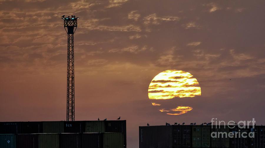 Giant Sun at Sunrise Cadiz Harbour by Pablo Avanzini