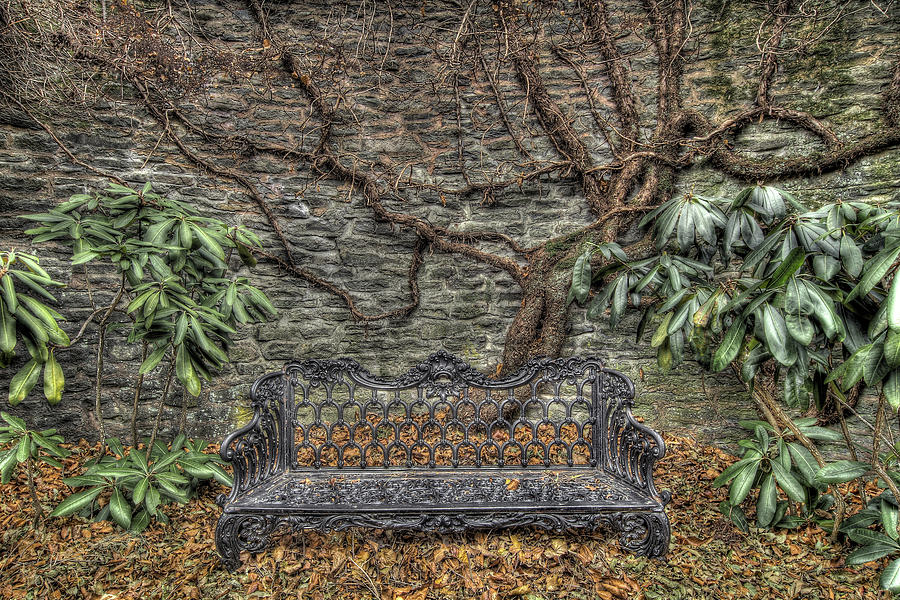 Gifford's Bench by Dawn J Benko
