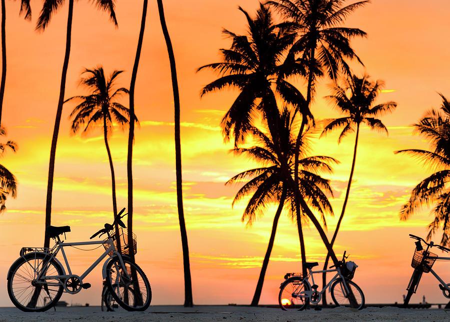 Gili Bikes by Sean Davey