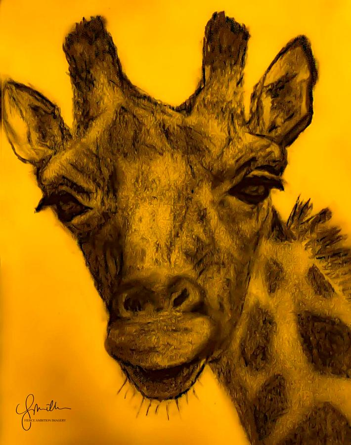 Giraffe Color Photograph By Lyndee Miller Is Fierce Ambition Imagery