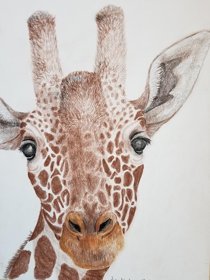 Giraffe by Lettie Neuhauser-MacLachlan