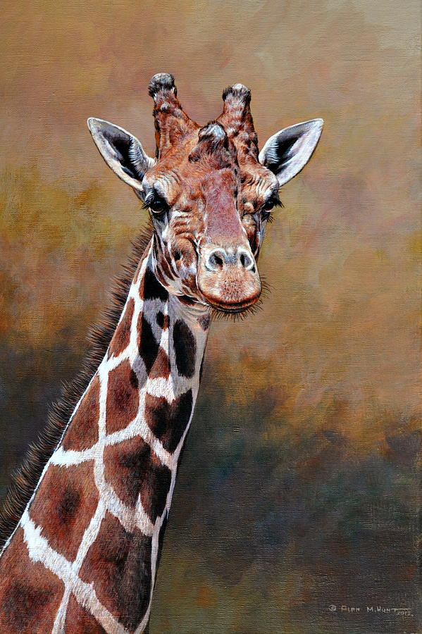 Giraffe Portrait by Alan M Hunt by Alan M Hunt