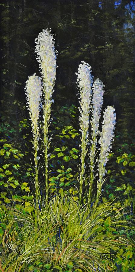 Glacier Beargrass by Lee Tisch Bialczak