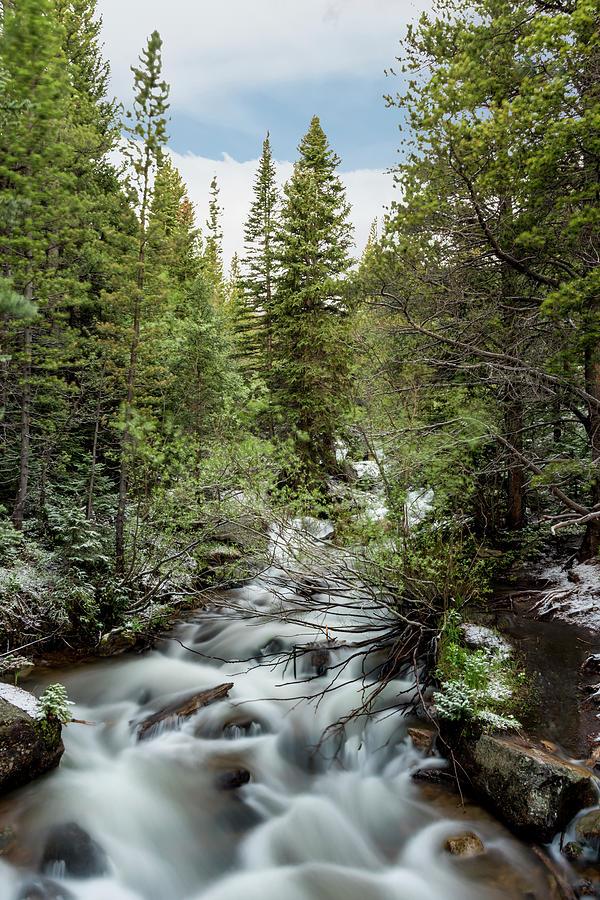 Glacier Creek by David Morefield