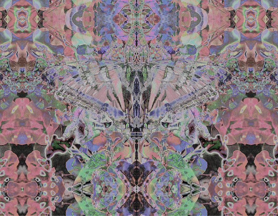 Glass Butterfly by Stephanie Grant