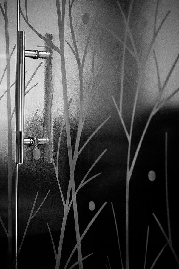Glass Door in Black and White by Prakash Ghai