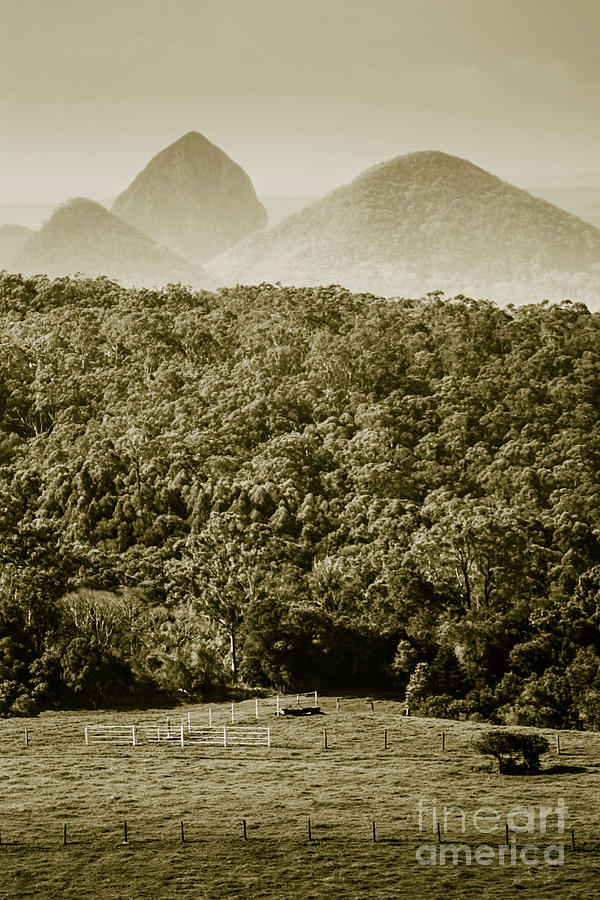 Mountain Photograph - Glass House Mountains by Jorgo Photography - Wall Art Gallery