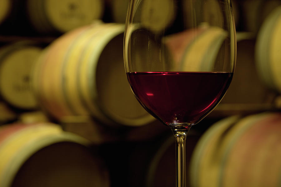 Glass Of Red Wine In Wine Cellar Photograph by Siegfried Layda