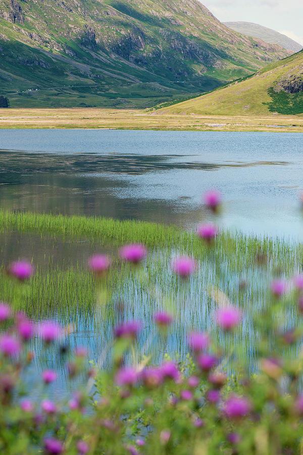 Glencoe Shoreline by Ray Devlin
