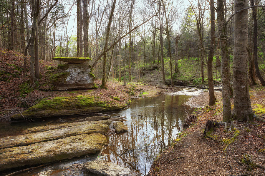 Glenrock Branch on the Natchez Trace by Susan Rissi Tregoning