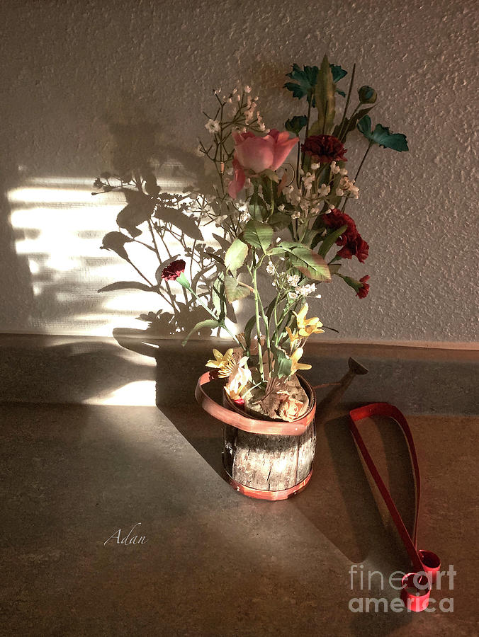 Glimpses - Watering Can Survivor by Felipe Adan Lerma