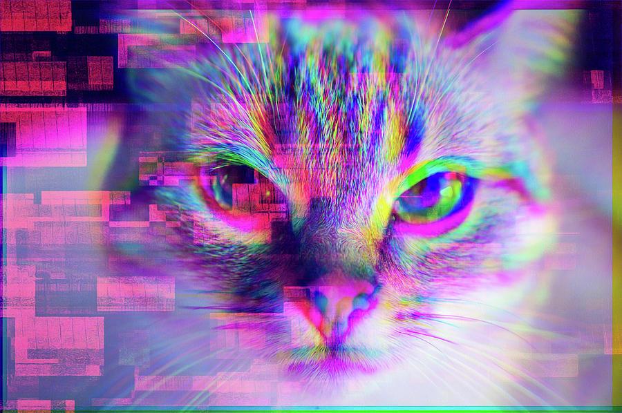 Glitch Art Trippy Cat Digital Art