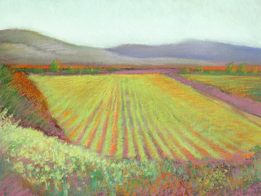 Gloria Ferrer Winery by Linda Ruiz-Lozito