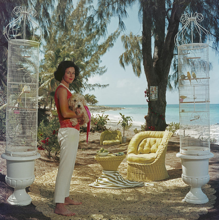 Gloria Schiff Photograph by Slim Aarons