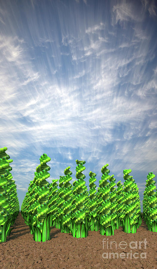 GM Crops Vertical by Russell Kightley