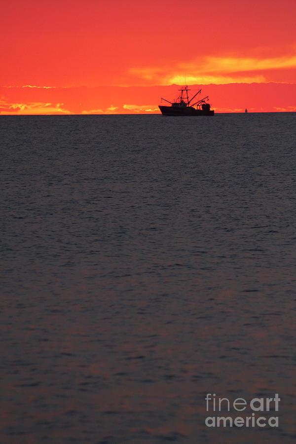 Gone Fishing by Tony Cordoza