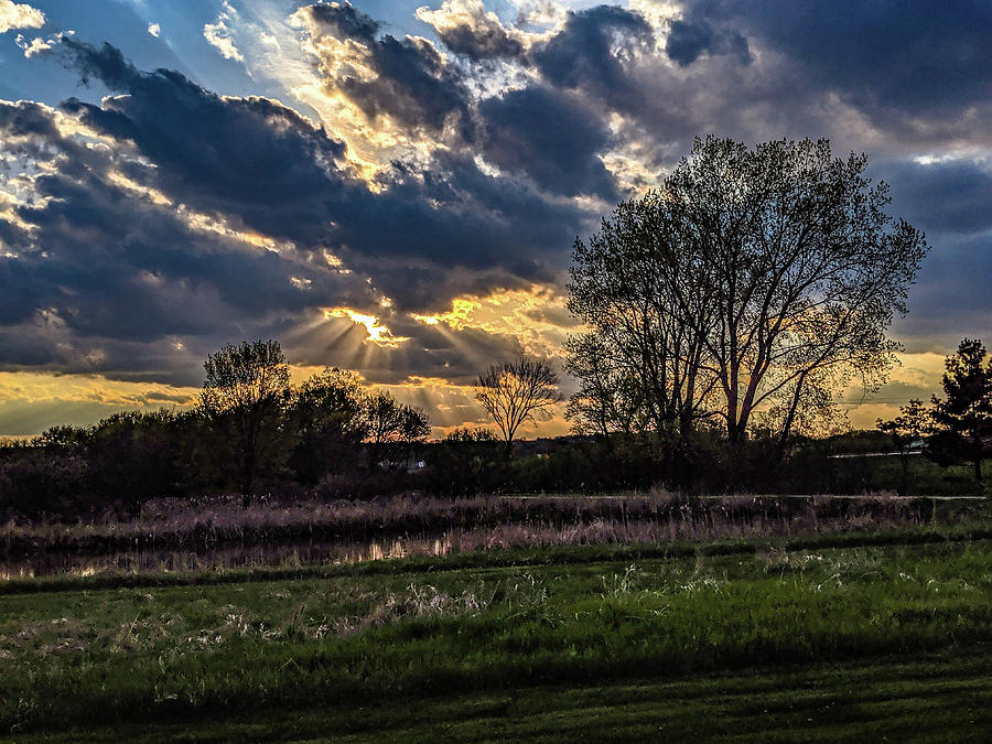 God Rays by Randy Scherkenbach