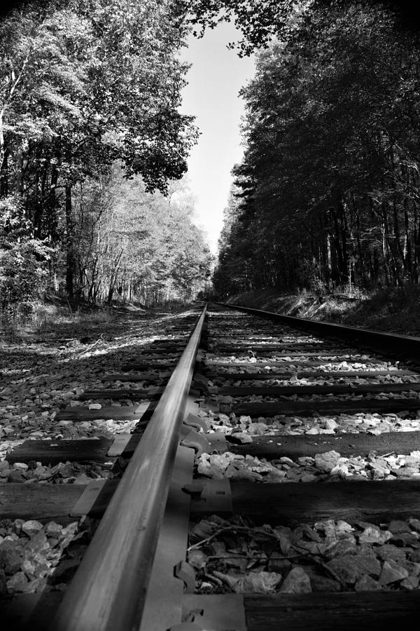 Going Down the Rail by Karen Harrison