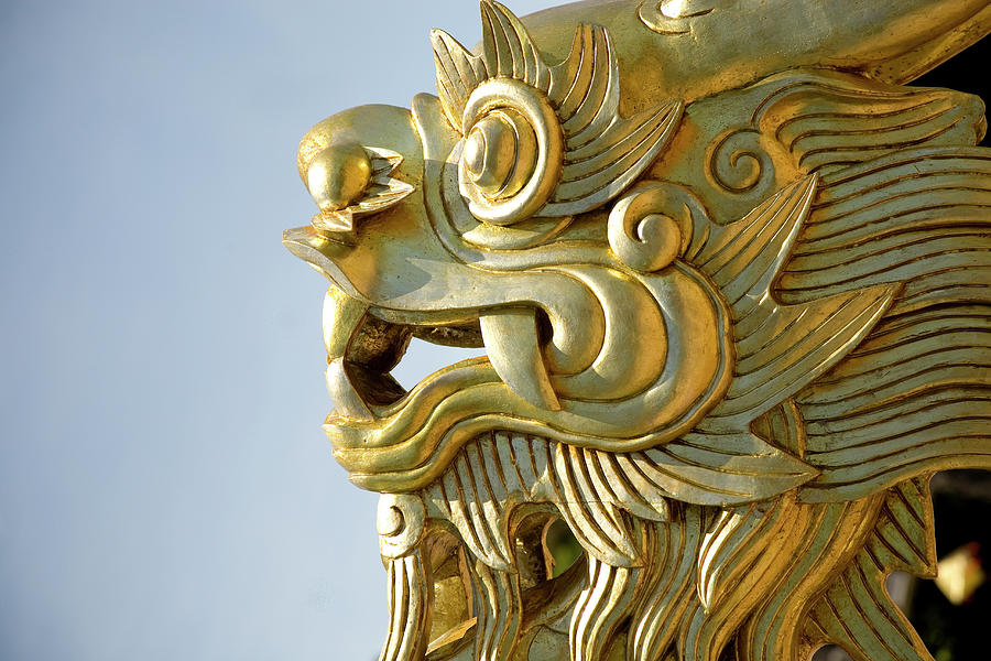 Gold Dragon Photograph by Nick M Do