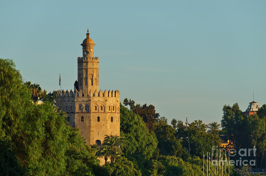 Gold Tower and Trees in Seville by Angelo DeVal