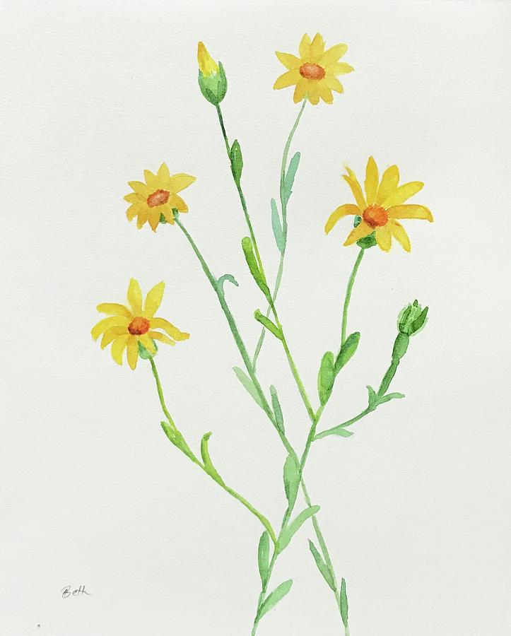 The Wildflower Series - Golden Aster by Beth Fontenot