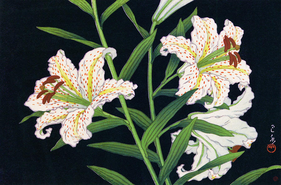 Ukiyoe Painting - Golden-banded Lily - Digital Remastered Edition by Kawase Hasui
