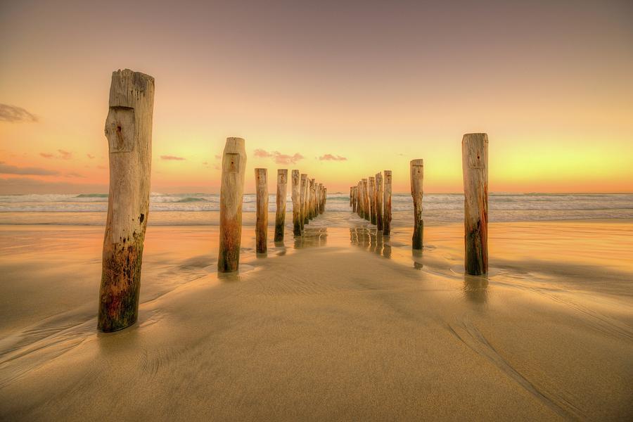 Golden Beach Photograph by Shaadi Faris