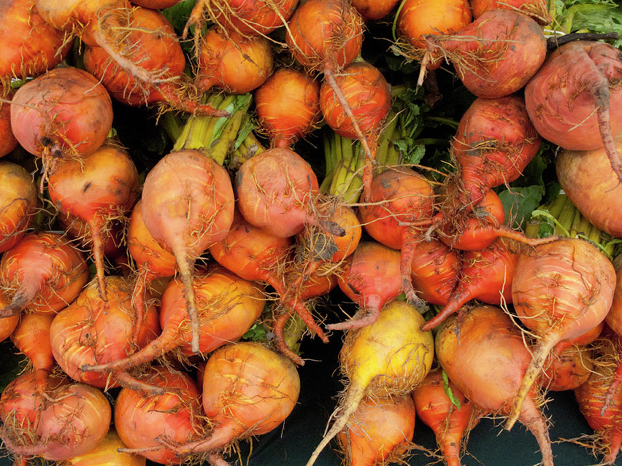 Golden Beets At A Farmers Market Photograph by Bill Boch