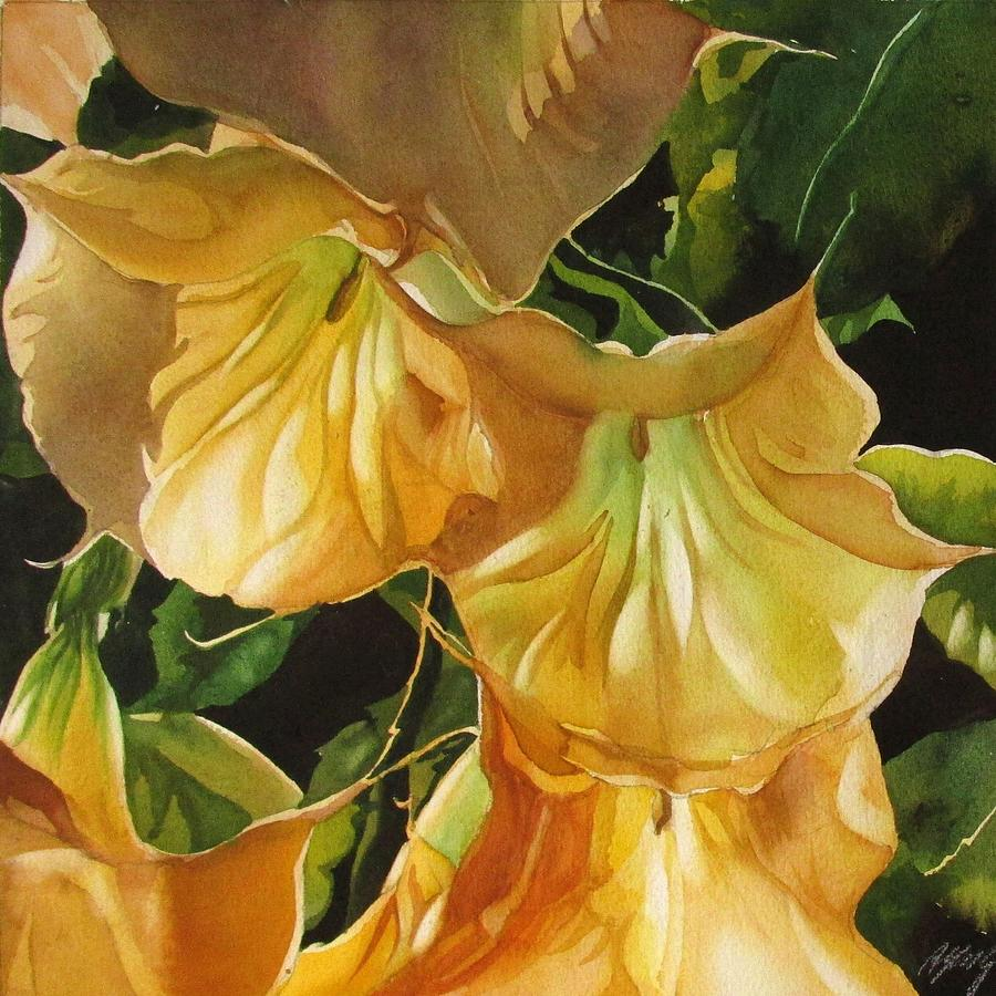 golden brugmansia by Alfred Ng
