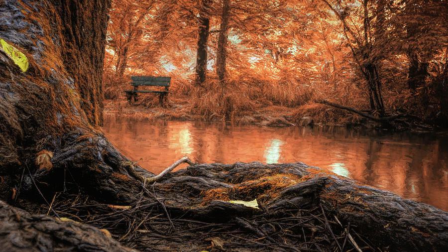 Golden Creek Vision by Jason Fink