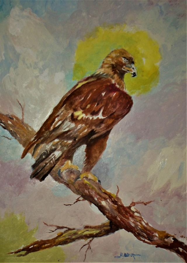 Golden Eagle Painting - Golden Eagle Perched For Prey by Al Brown