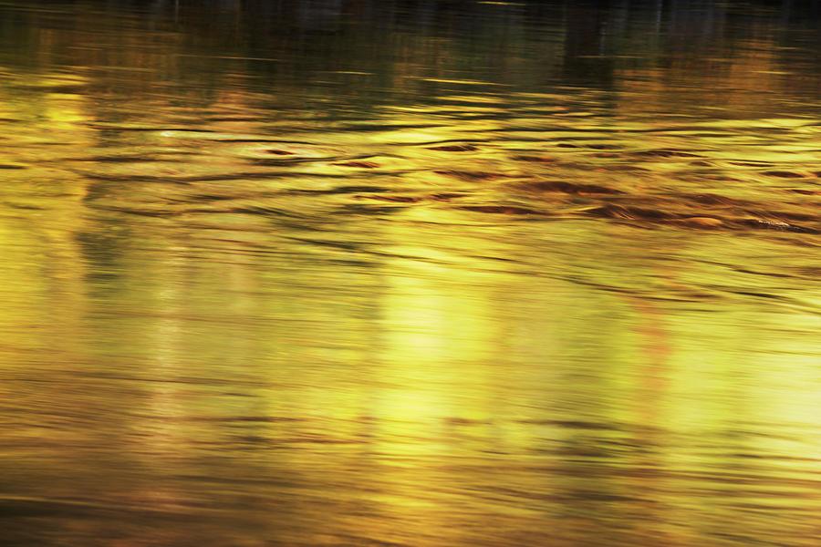 Golden flow by Vishwanath Bhat