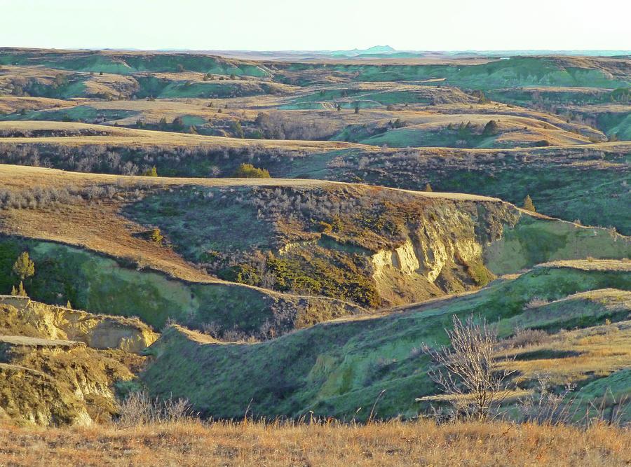 Golden Grasslands Enchantment by Cris Fulton