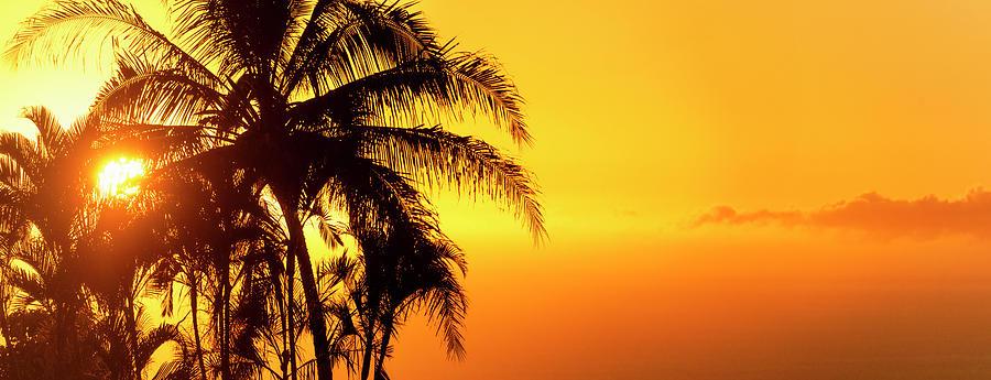 Golden Hawaiian Sunset by Christopher Johnson