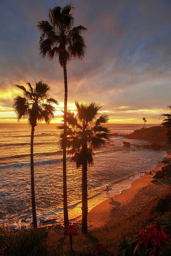 Golden Hour along Heisler Park Trail by Cliff Wassmann