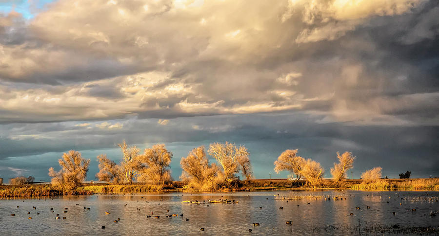 Golden Hour in the Refuge by Cheryl Strahl