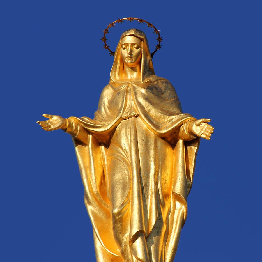 Golden Maria Photograph