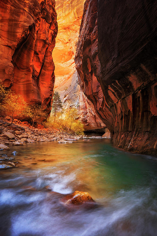 Golden Narrows Vertical by Johnny Adolphson
