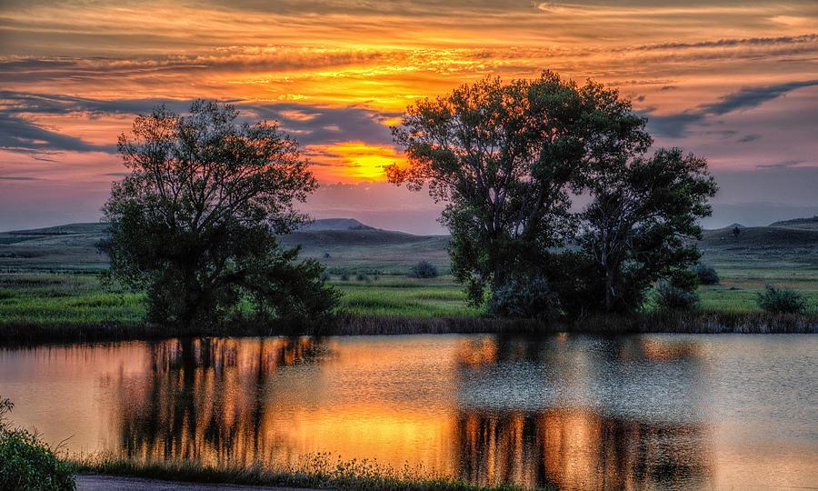 Golden Pond at 36x60 by Fiskr Larsen