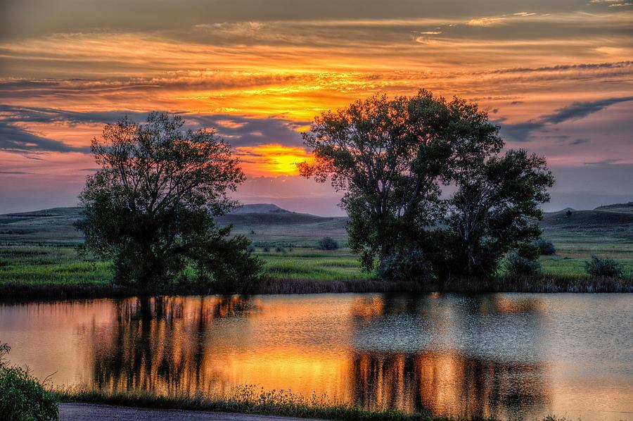 Golden Pond by Fiskr Larsen